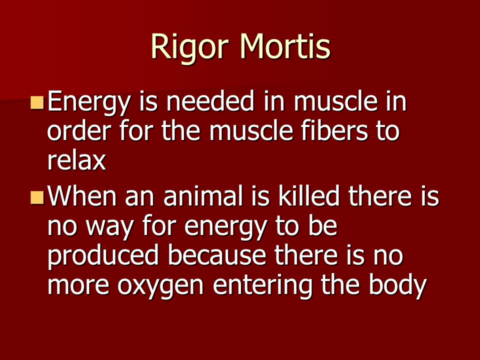 Rigor Mortis Energy is needed in muscle in order for the muscle fibers to relax.