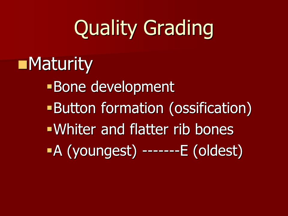 Quality Grading Maturity Bone development