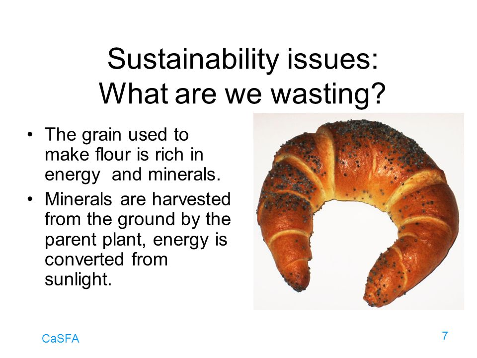 Sustainability issues: What are we wasting