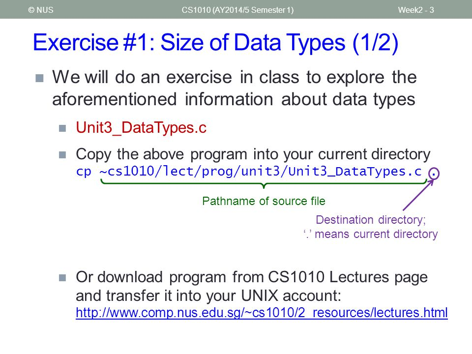 Exercise #1: Size of Data Types (1/2)