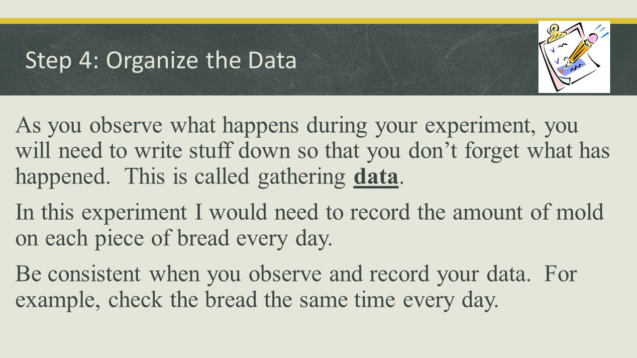 Step 4: Organize the Data