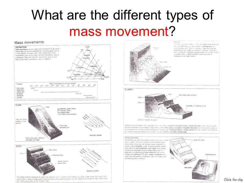 What are the different types of mass movement