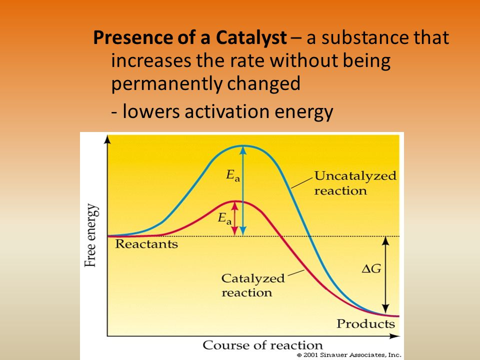 Presence of a Catalyst – a substance that increases the rate without being permanently changed