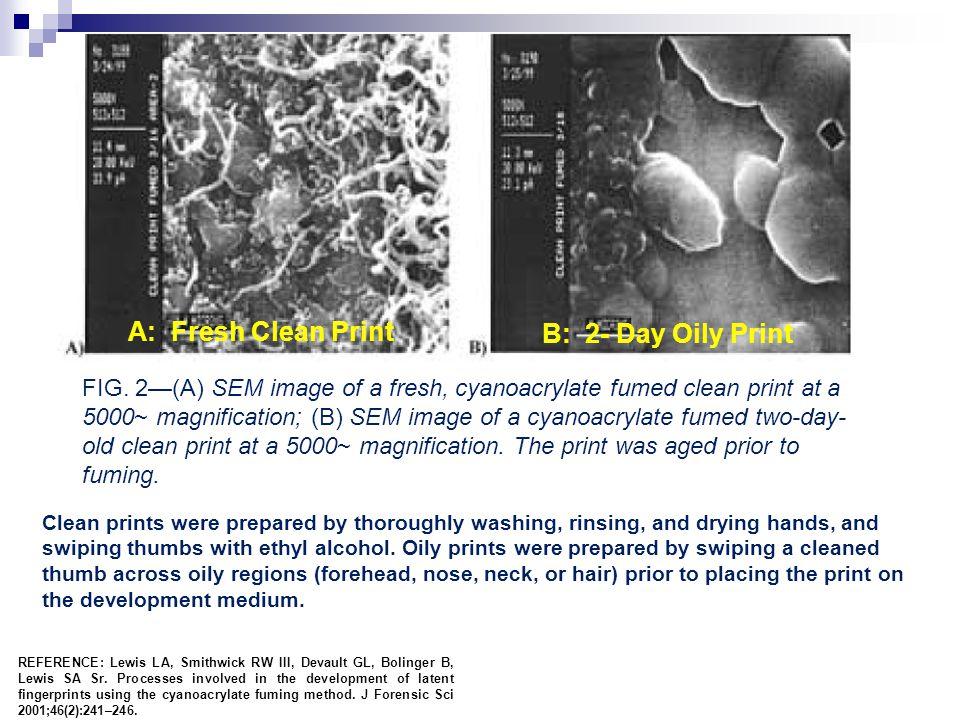 A: Fresh Clean Print B: 2- Day Oily Print