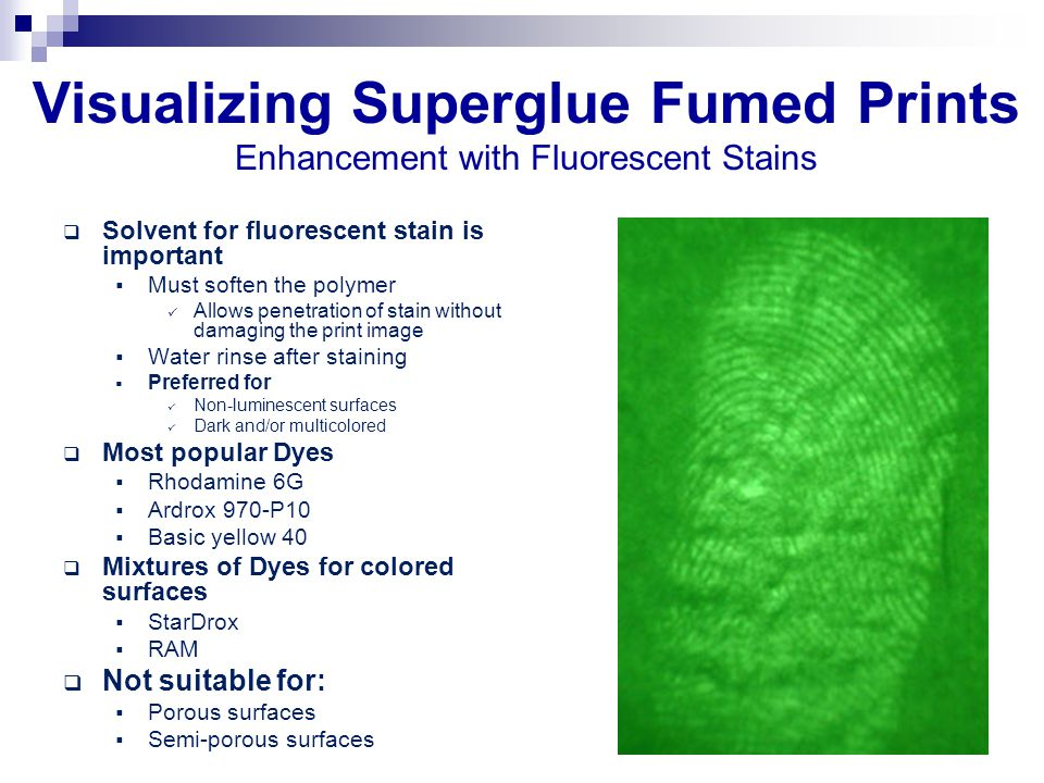 Visualizing Superglue Fumed Prints Enhancement with Fluorescent Stains