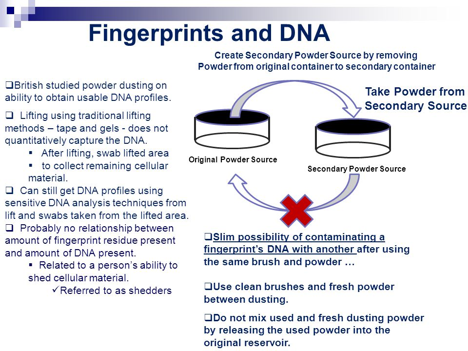 Fingerprints and DNA Take Powder from Secondary Source