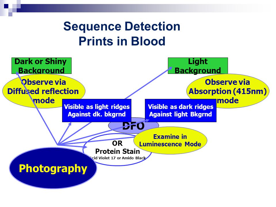 Sequence Detection Prints in Blood