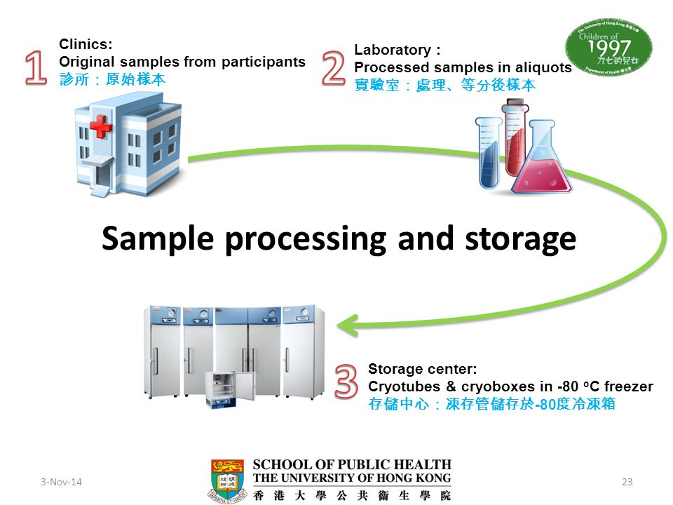 Sample processing and storage