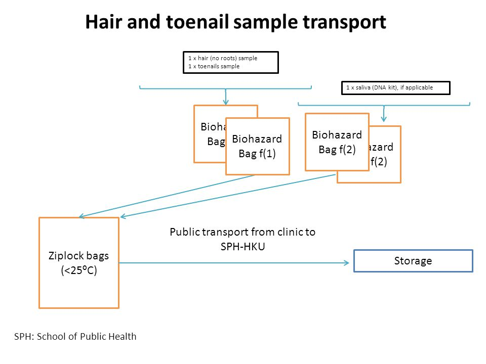 Public transport from clinic to
