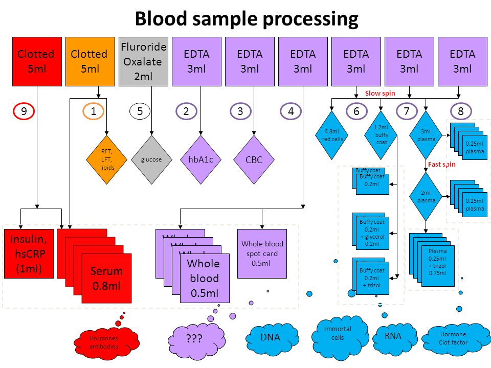 Blood sample processing