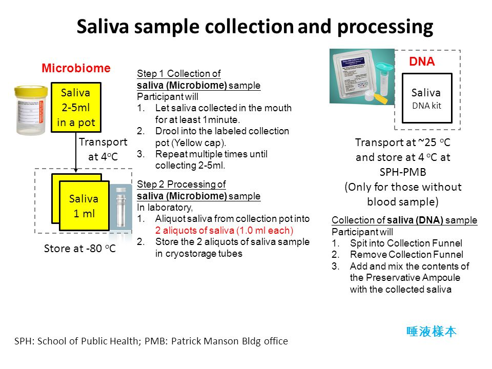 Saliva sample collection and processing