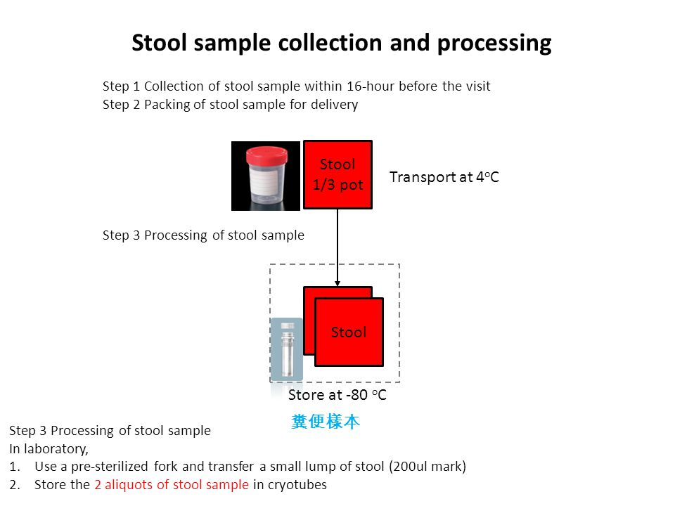 Stool sample collection and processing