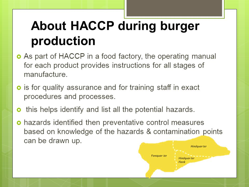 About HACCP during burger production