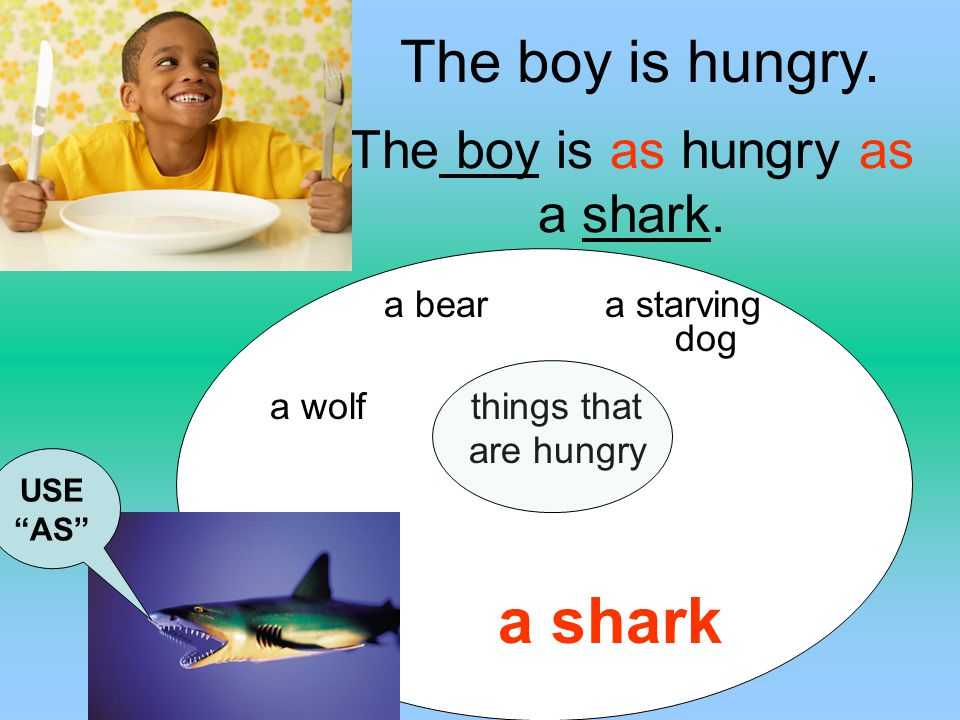 The boy is as hungry as a shark.