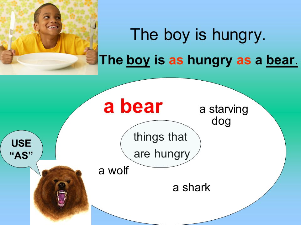 The boy is hungry. The boy is as hungry as a bear. a bear a starving