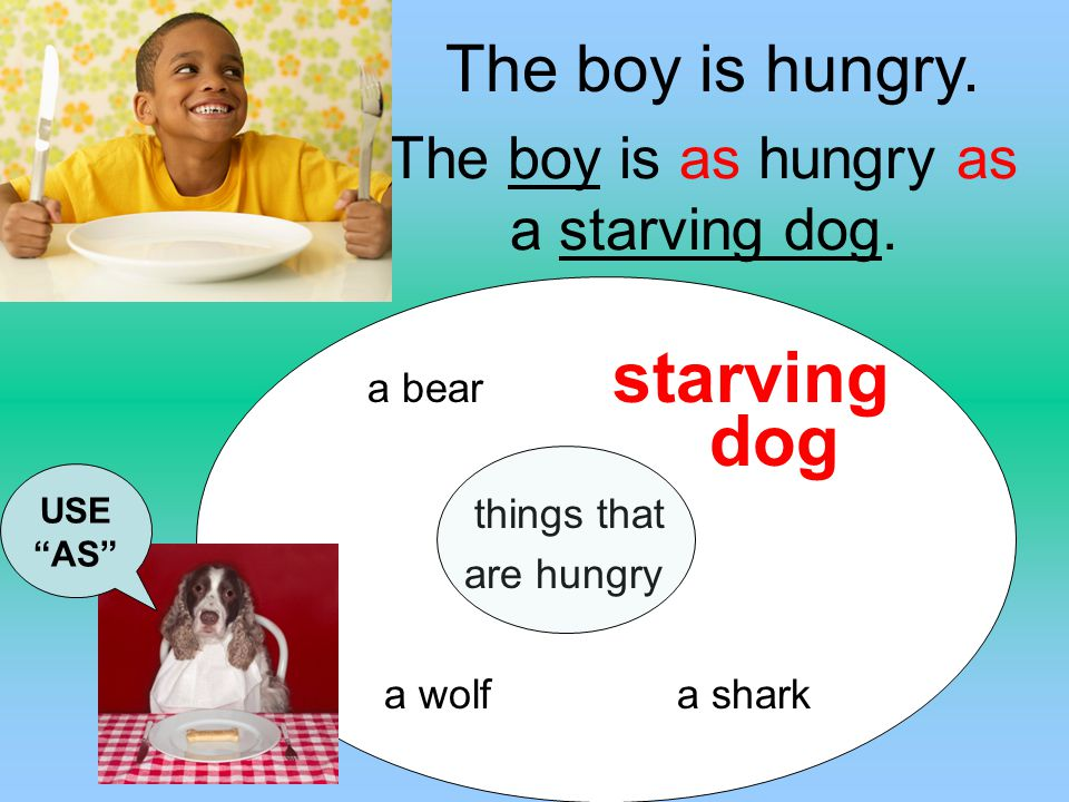 The boy is as hungry as a starving dog.