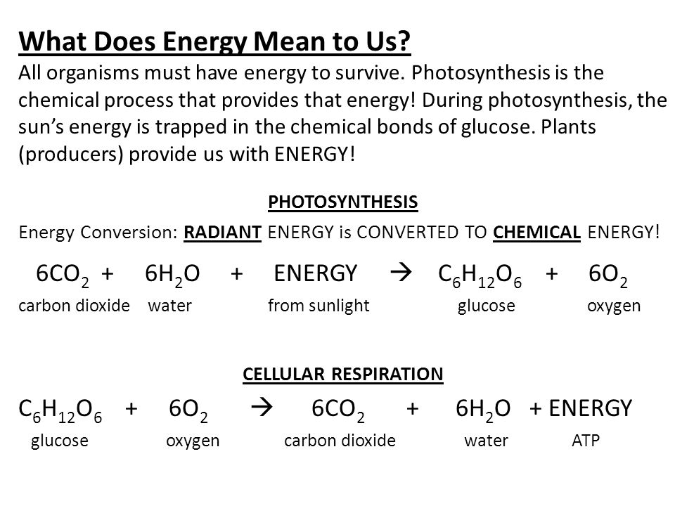 What Does Energy Mean to Us