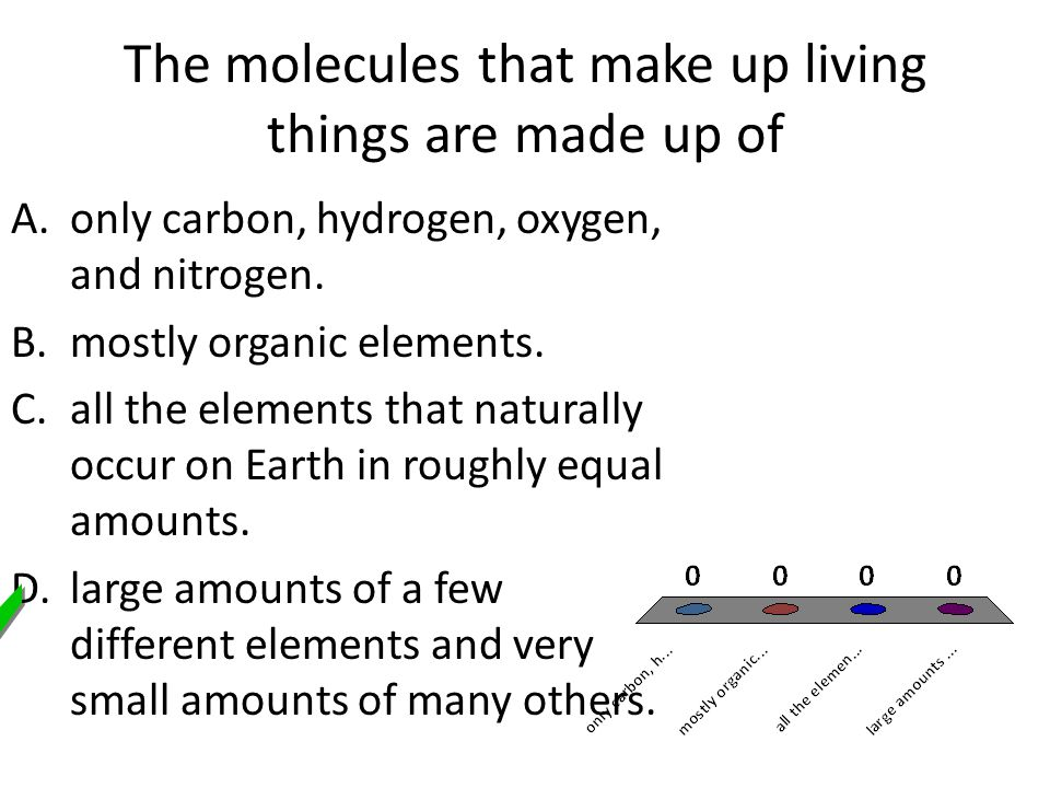 The molecules that make up living things are made up of