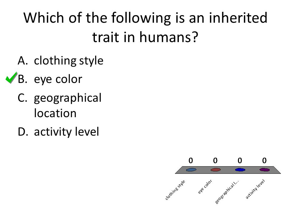 Which of the following is an inherited trait in humans