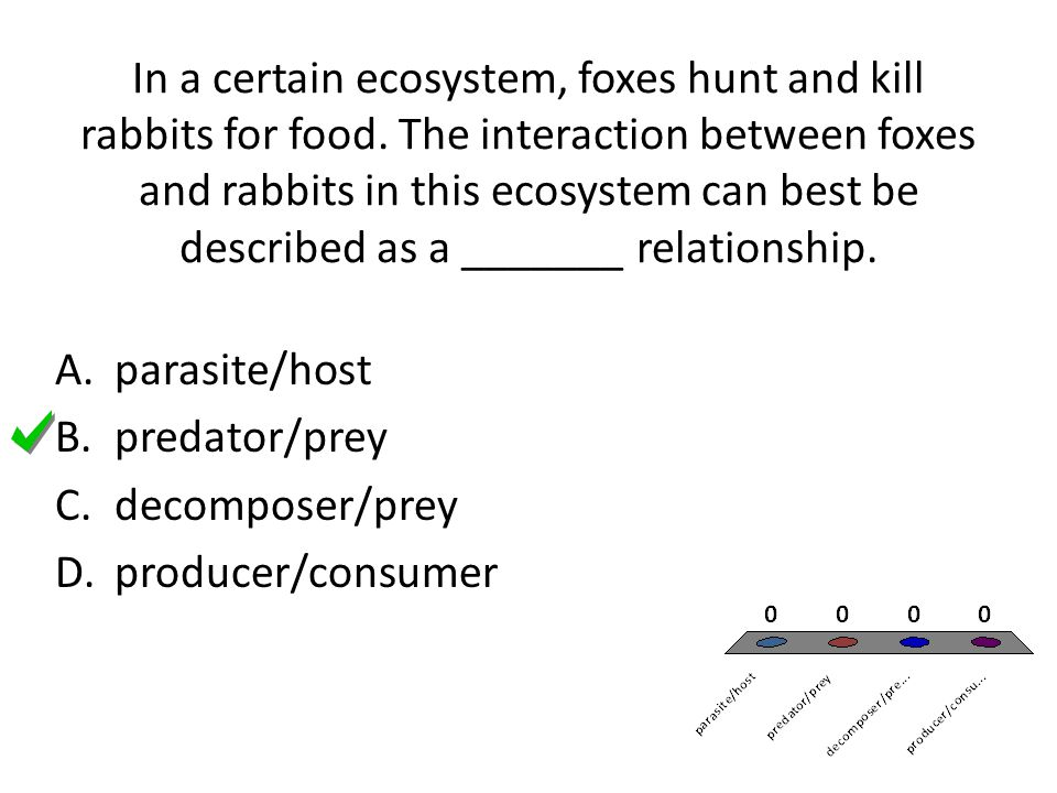 In a certain ecosystem, foxes hunt and kill rabbits for food