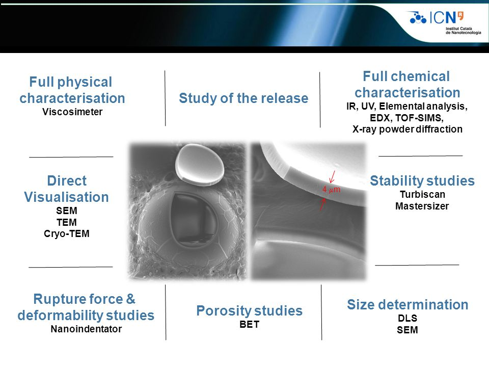 deformability studies Size determination Porosity studies