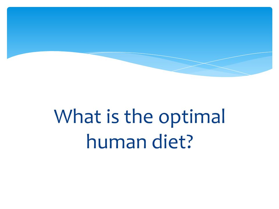 What is the optimal human diet