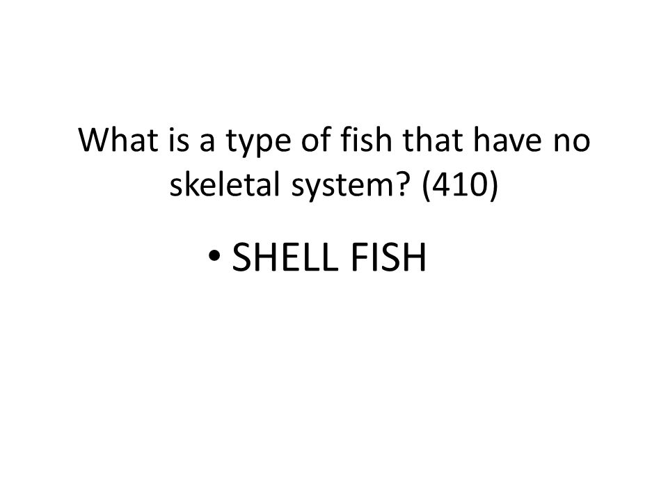 What is a type of fish that have no skeletal system (410)