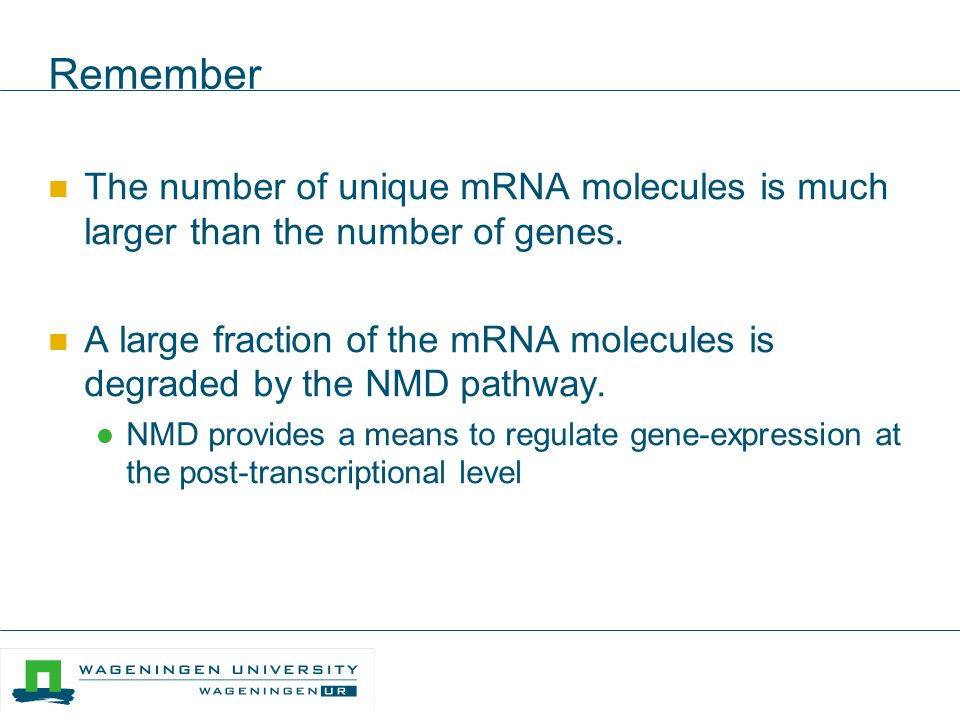 Remember The number of unique mRNA molecules is much larger than the number of genes.