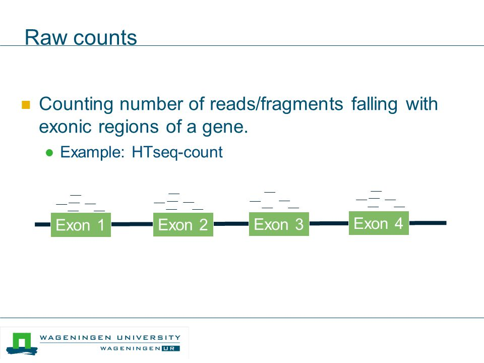 Raw counts Counting number of reads/fragments falling with exonic regions of a gene. Example: HTseq-count.