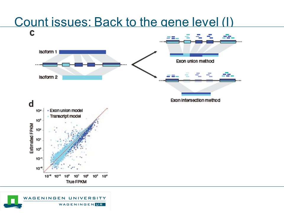 Count issues: Back to the gene level (I)