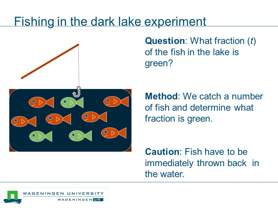 Fishing in the dark lake experiment
