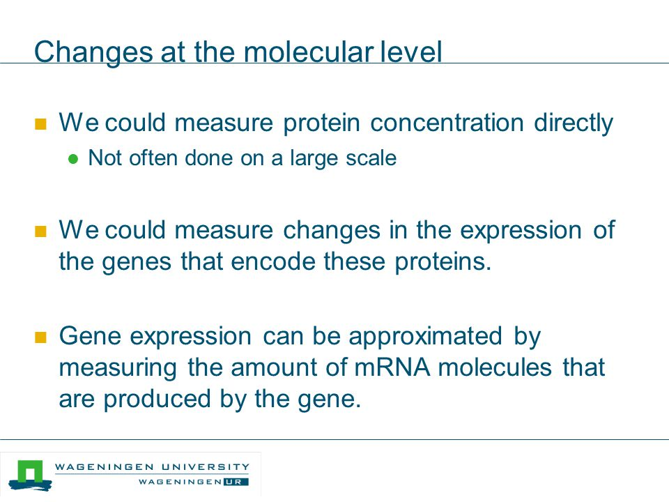 Changes at the molecular level