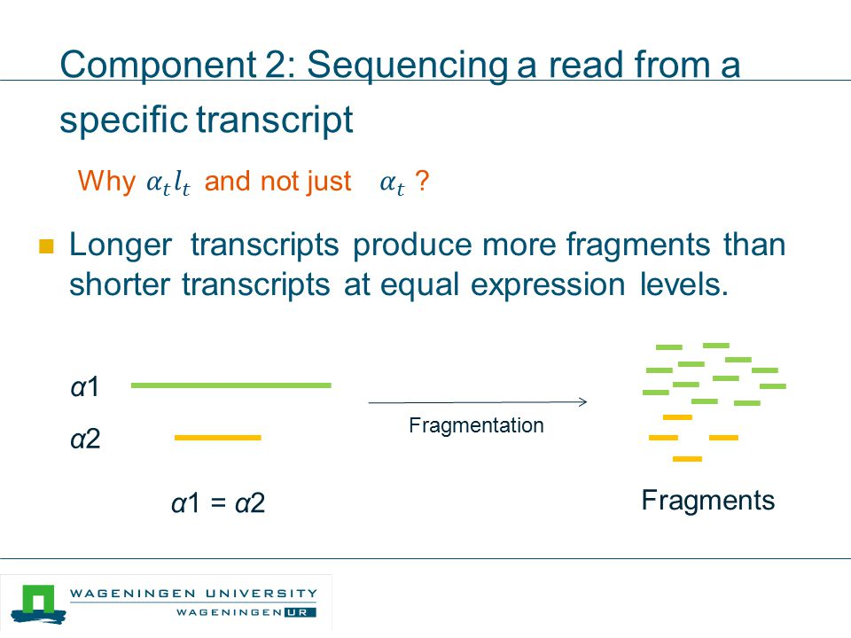 Component 2: Sequencing a read from a specific transcript