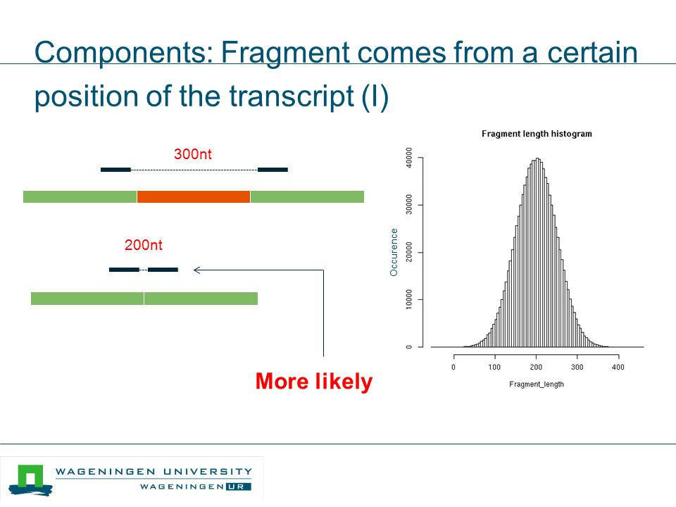 Components: Fragment comes from a certain position of the transcript (I)