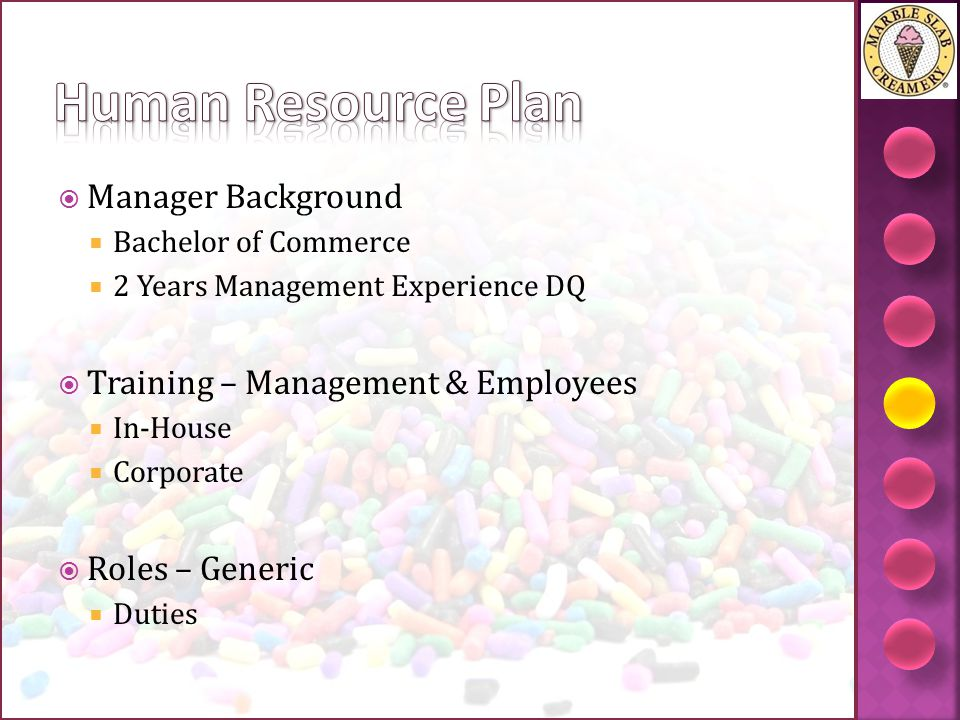 Human Resource Plan Manager Background