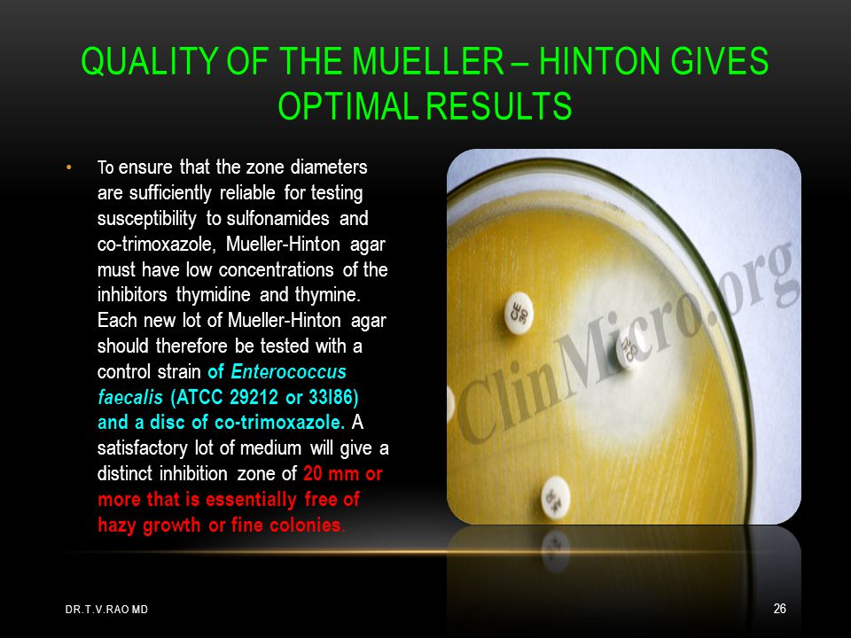 Quality of the Mueller – Hinton gives optimal results