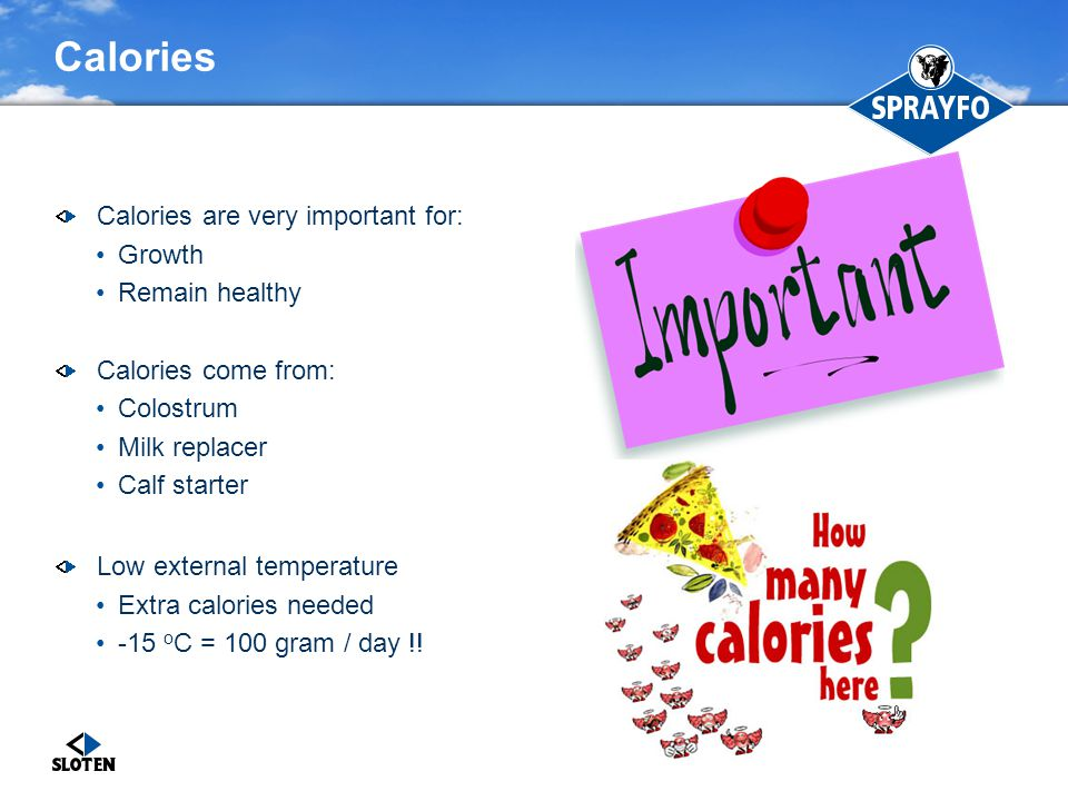 Calories Calories are very important for: Growth Remain healthy