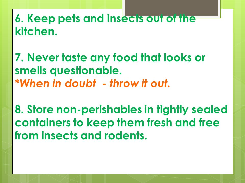 6. Keep pets and insects out of the kitchen.