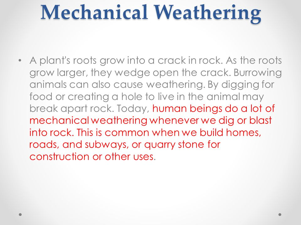 Plants and Animals in Mechanical Weathering