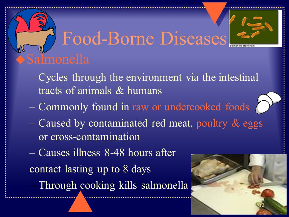 Food-Borne Diseases Salmonella