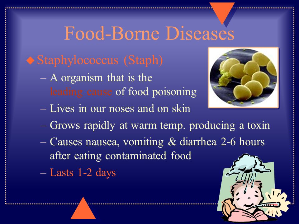 Food-Borne Diseases Staphylococcus (Staph)