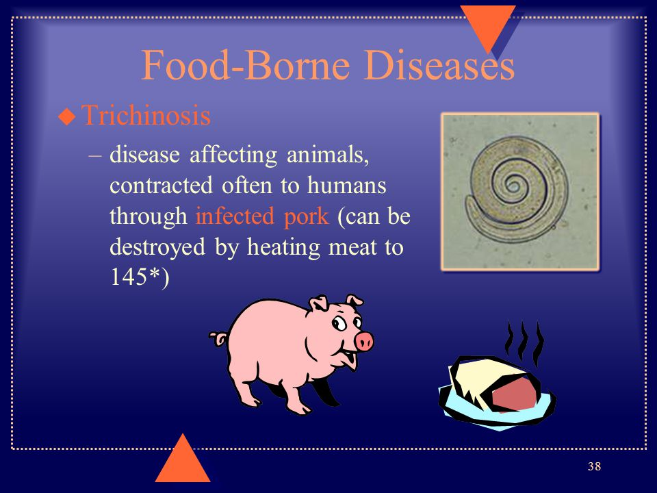 Food-Borne Diseases Trichinosis