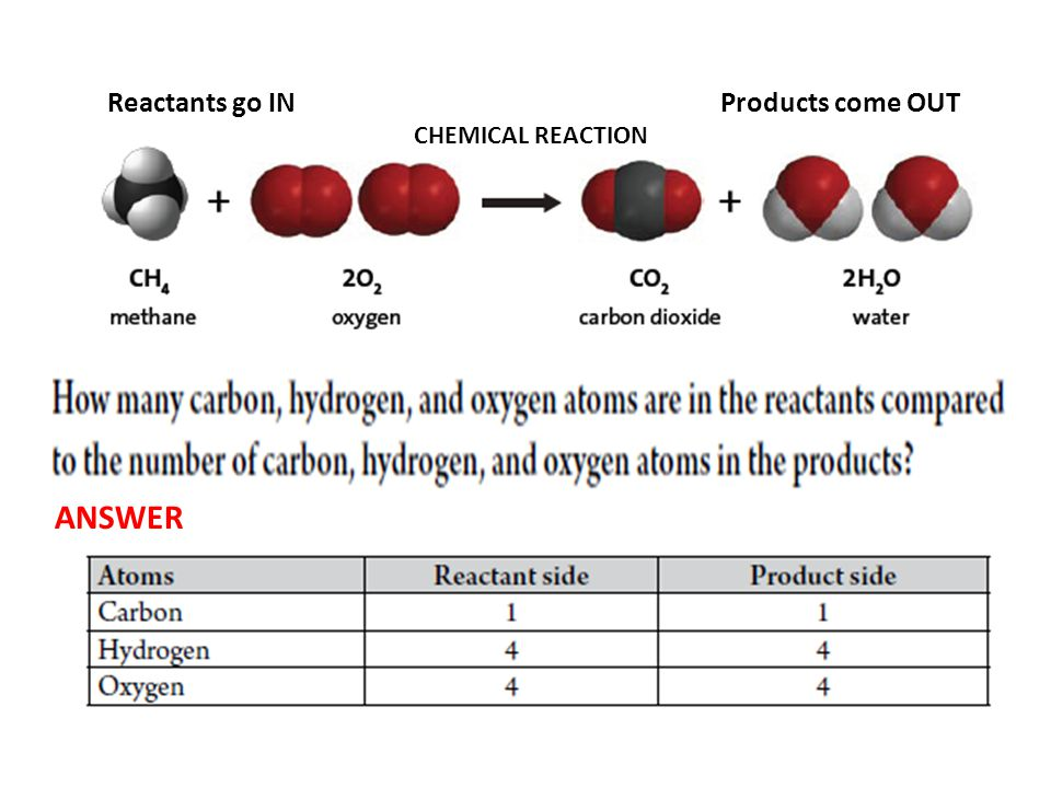 Reactants go IN Products come OUT CHEMICAL REACTION ANSWER