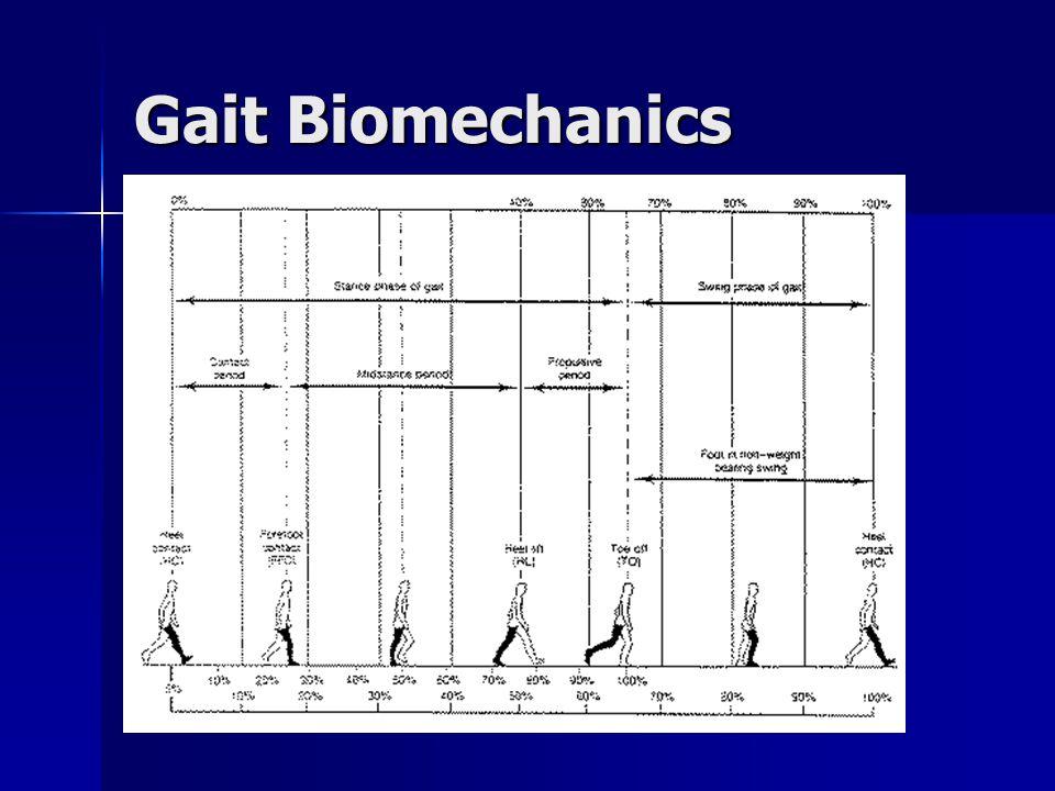 Gait Biomechanics