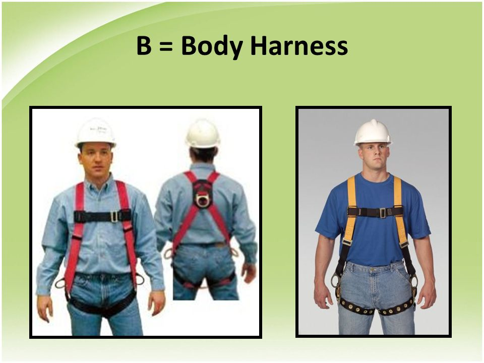 B = Body Harness