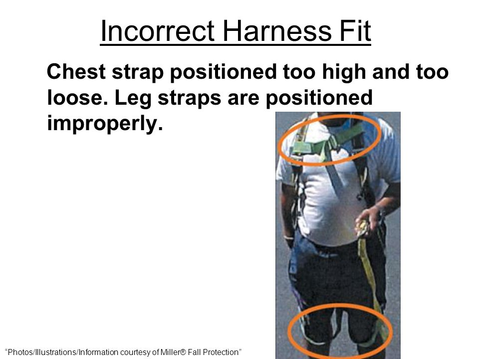 Incorrect Harness Fit Chest strap positioned too high and too loose. Leg straps are positioned improperly.