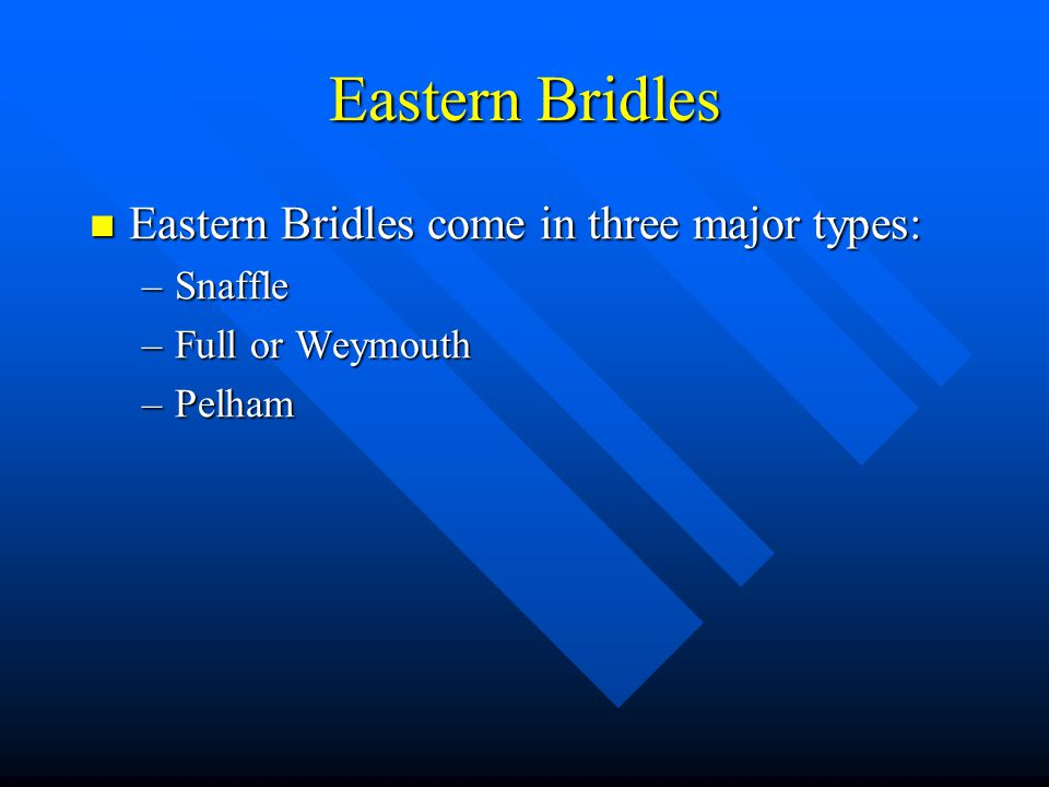 Eastern Bridles Eastern Bridles come in three major types: Snaffle