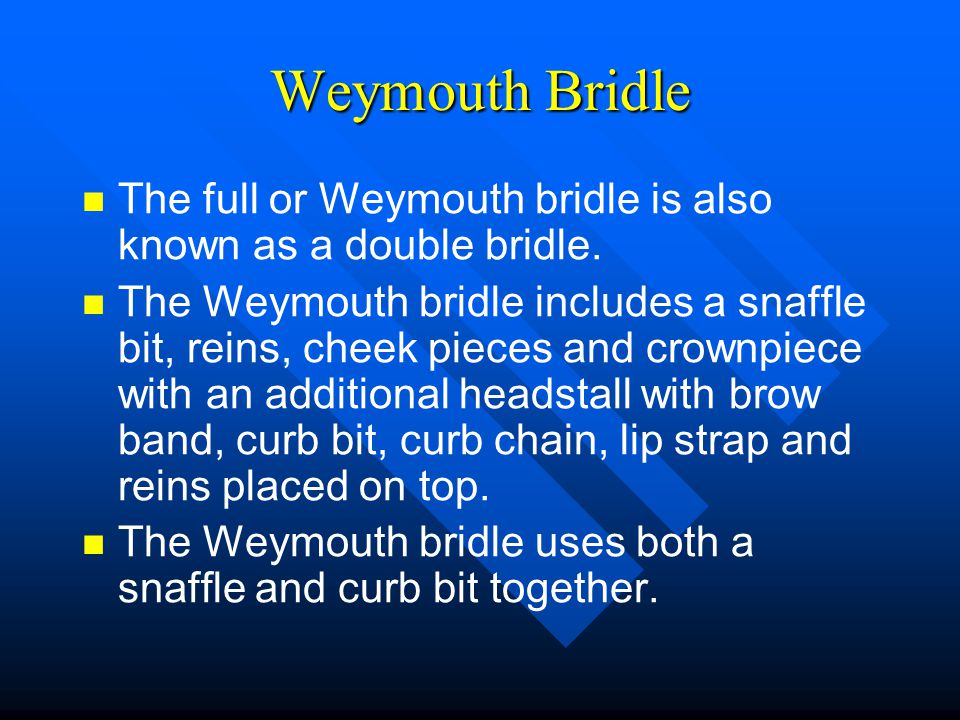 Weymouth Bridle The full or Weymouth bridle is also known as a double bridle.