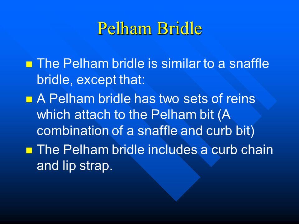 Pelham Bridle The Pelham bridle is similar to a snaffle bridle, except that: