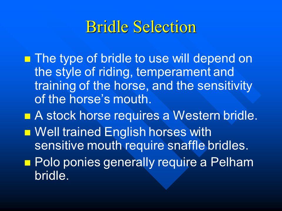 Bridle Selection
